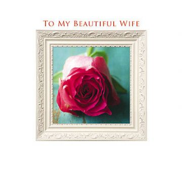 "WIFE BIRTHDAY CARD ""FRAMED ROSE"" LARGE SQUARE SIZE 6.25"" x 6.25"" AGRJ 9990"